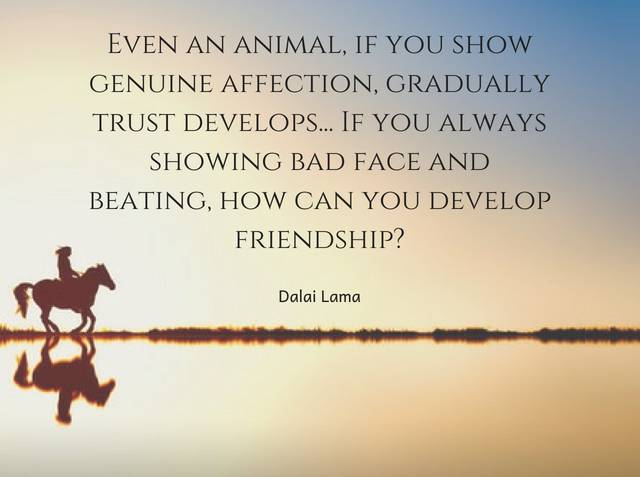 Even an animal, if you show genuine affection, gradually trust